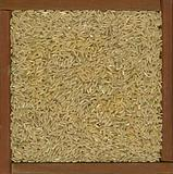 long grain brown rice background