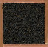 wild rice background
