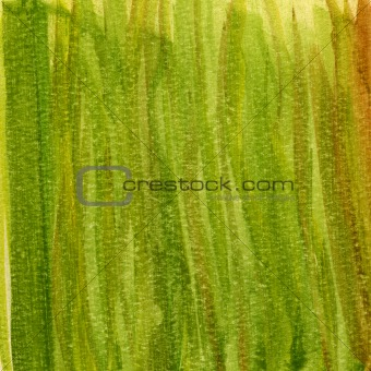 green grunge painted paper texture