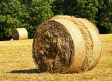 rural scene of bales