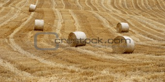 After harvest