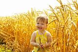 Joyful kid in wheat field