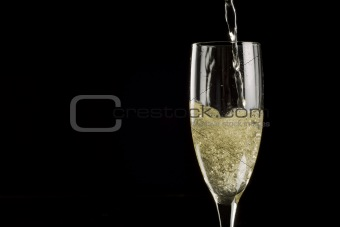 Single champagne flute filled with sparkling wine