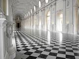 Galleria di Diana, Venaria