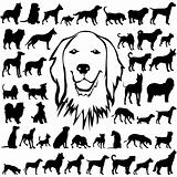 Vectoral Dog Silhouettes