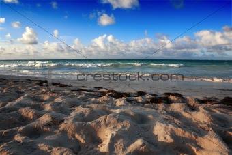 Beach at Punta Cana