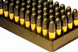 .22 bullets in a tray