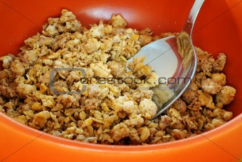 cereals with spoon in orange bowl