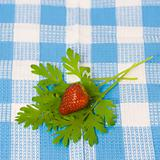 Strawberry and plant on fabric background