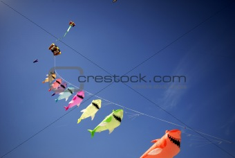 Kite sharks high up and sky blue