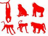 Monkey silhouettes