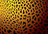 leopard skin gold