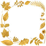 Golden Leaf Border