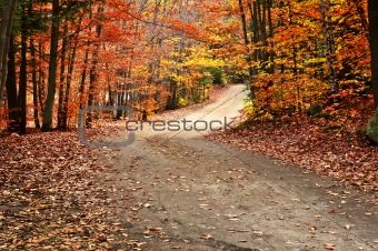 Autumn landscape with a path
