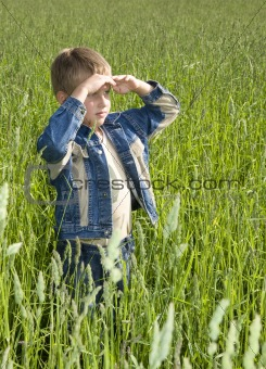 happy young boy looking horizon and dreaming on green field gras