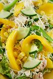 Chicken And Mango Salad 3