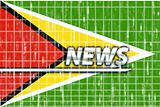 Flag of Guyana news