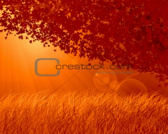 Abstract forest orange background