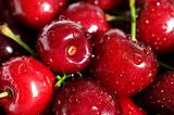 wet fresh cherry background