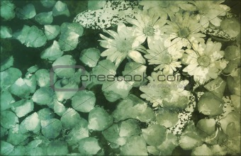 Painted Flowers Background Grunge