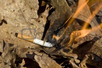 cigarette burning leaves