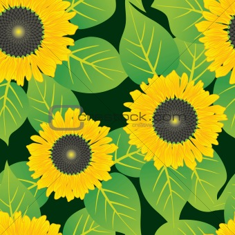 Abstract sunflowers flowers background.
