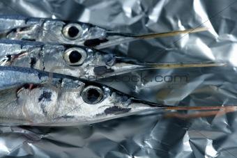 three needle fish, uncooked macro studio shot