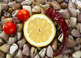 Clams with tomato, chili and lemon, seafood
