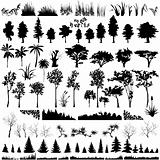 Detailed Vectoral Tree, Leaf, Branch and Grass Silhouettes