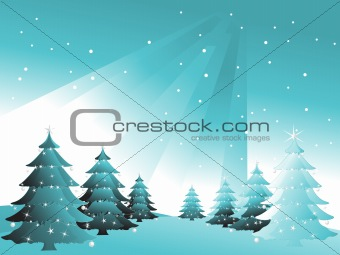 green spruce in snow sky, vector illustration