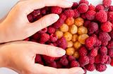 holding raspberries