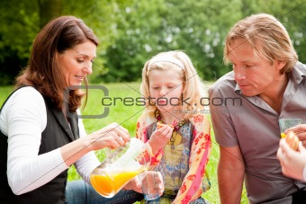 Outdoors family picnic