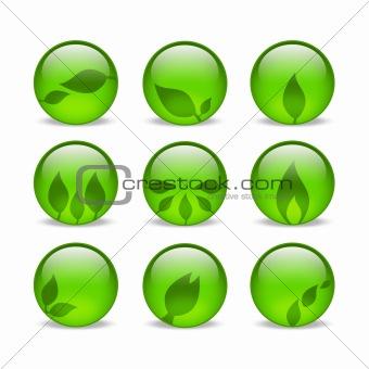 Green eco glass leaf web icons
