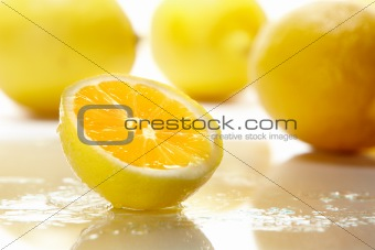 Fresh sliced yellow lemon