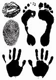 black ink stamps of human hands, foots, lops and finger