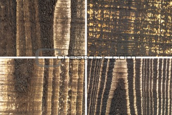 four kinds of wood texture