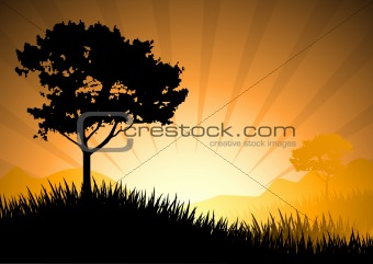 amazing natural sunset landscape with tree silhouette, vector il
