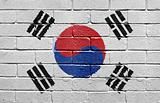 Flag of South Korea on brick wall