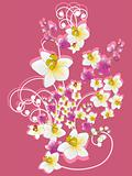 pink background with flower bunch