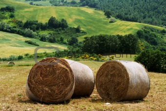 Three hay bales