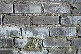 Old brick grey wall with a mould texture