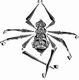 Arachne Spider