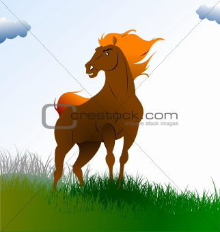Country sunrise with horse image