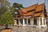 Buddha Siddhartha Gautama living Here