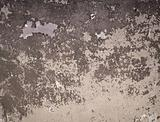 Brown painted old wall background