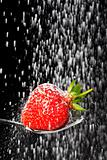 icing sugar falling on a strawberry on a spoon