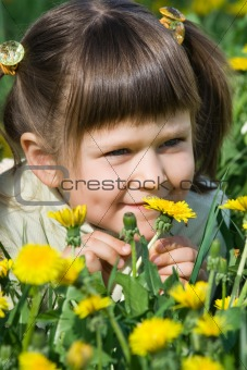 Little cute girl is sniffing at the dandelion