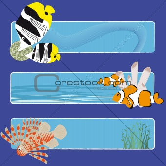 fish banners 3 no text