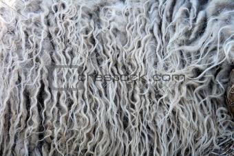 fleece background