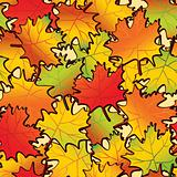 Maple leaf abstract background.